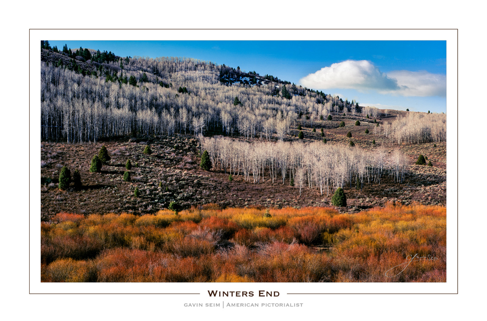 winters end - 4x5 film